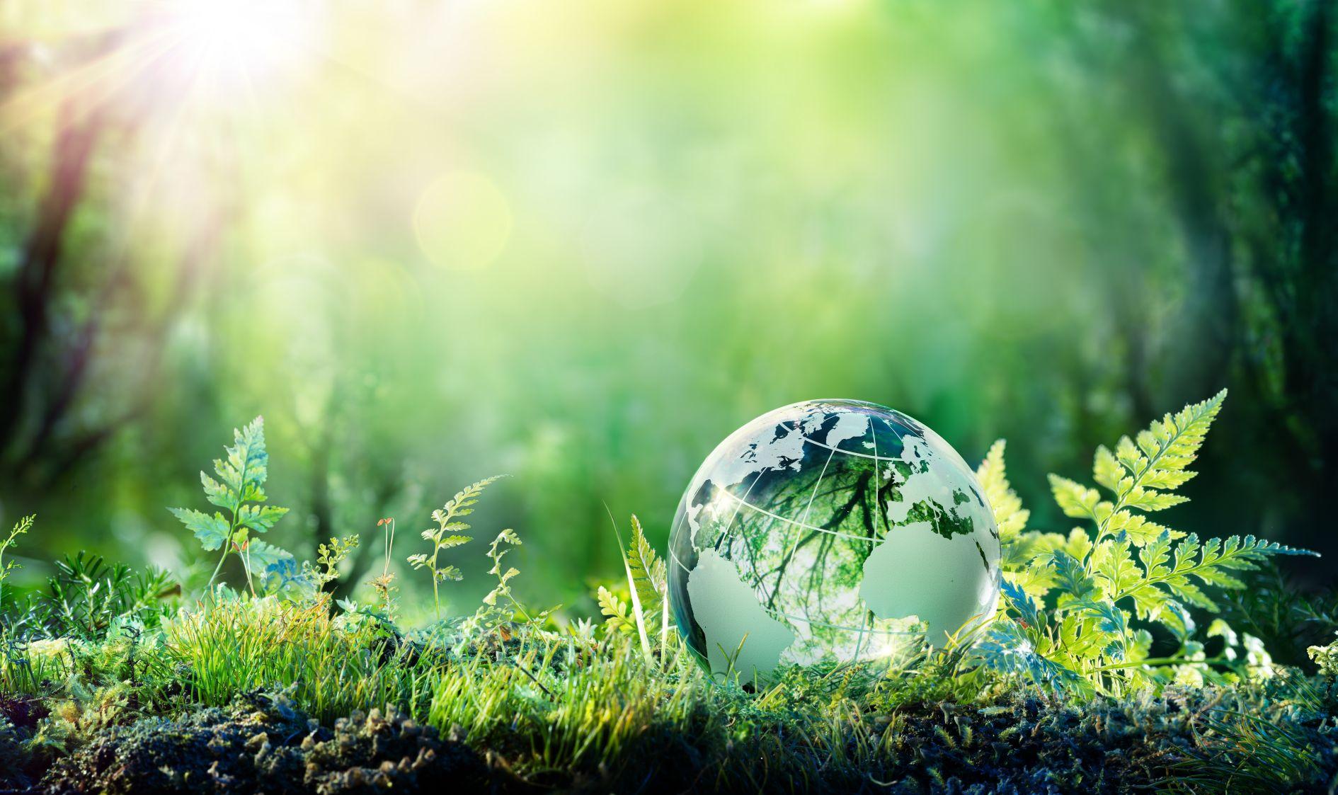 Zeigt eine winzige Erdkugel aus Glas, eingebettet in eine vielfältige Graslandschaft. Symbolbild für die weltweit möglichen Bezugsquellen von umweltfreundlichen Produkten der Minimalmengenschmierung von Unilube.