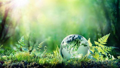 Zeigt eine winzige Erdkugel aus Glas, eingebettet in eine vielfältige Graslandschaft. Sinnbild für die weltweit möglichen Bezugsquellen von umweltfreundlichen Produkten der Minimalmengenschmierung von Unilube.